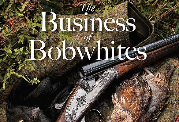 Business of Bobwhites