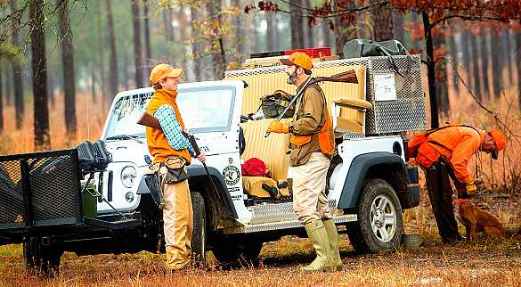 Our expert quail hunting guides