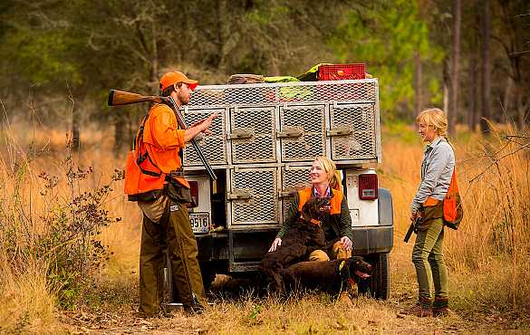 Quail hunting guides and hunters on Jeep.